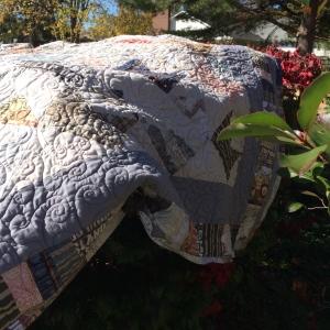 quilt in nature