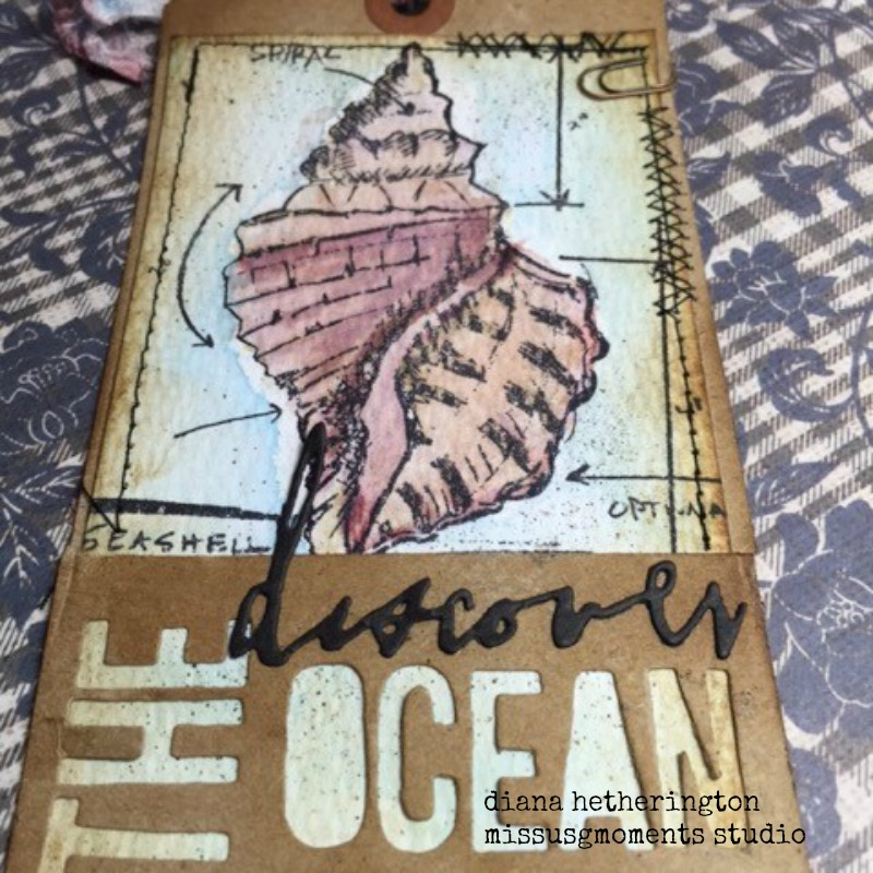 tim holtz discover the ocean
